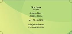 skinny-business-cards-10